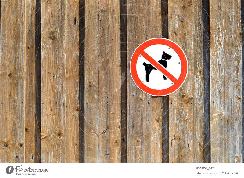No dogs here, please!! Wall (barrier) Wall (building) Animal Pet Dog 1 Wood Bans Wooden wall Barn Signs and labeling Prohibition sign Walk the dog Shepherd dog