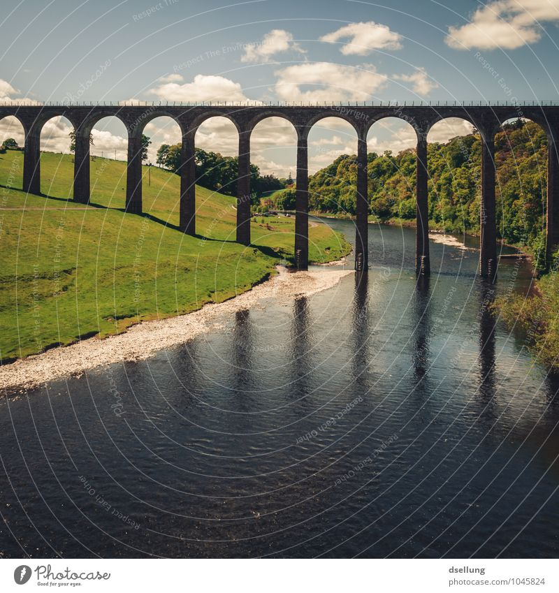 long legs are beautiful... Nature Landscape Sky Clouds Meadow Forest River Scotland Bridge Manmade structures Tourist Attraction Old Famousness Large Tall