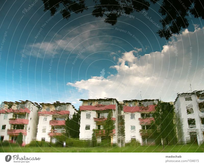 Nature Water Sky Tree Green Blue City Summer House (Residential Structure) Clouds Colour Lamp Life Meadow Window Grass