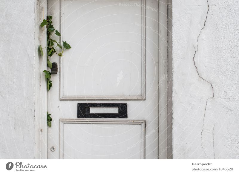 Visitors welcome Flat (apartment) London Old town House (Residential Structure) Detached house Wall (barrier) Wall (building) Door Mailbox Gloomy White Entrance