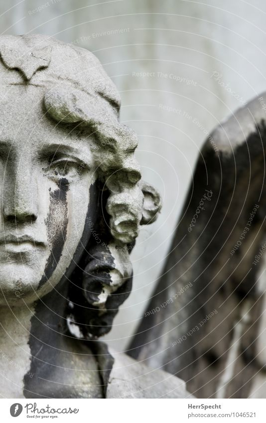 sorrow Work of art Sculpture London Old Esthetic Beautiful Gray Sadness Grief Death Pain Cemetery Tomb Grave Angel Christianity Tears Cry Stone