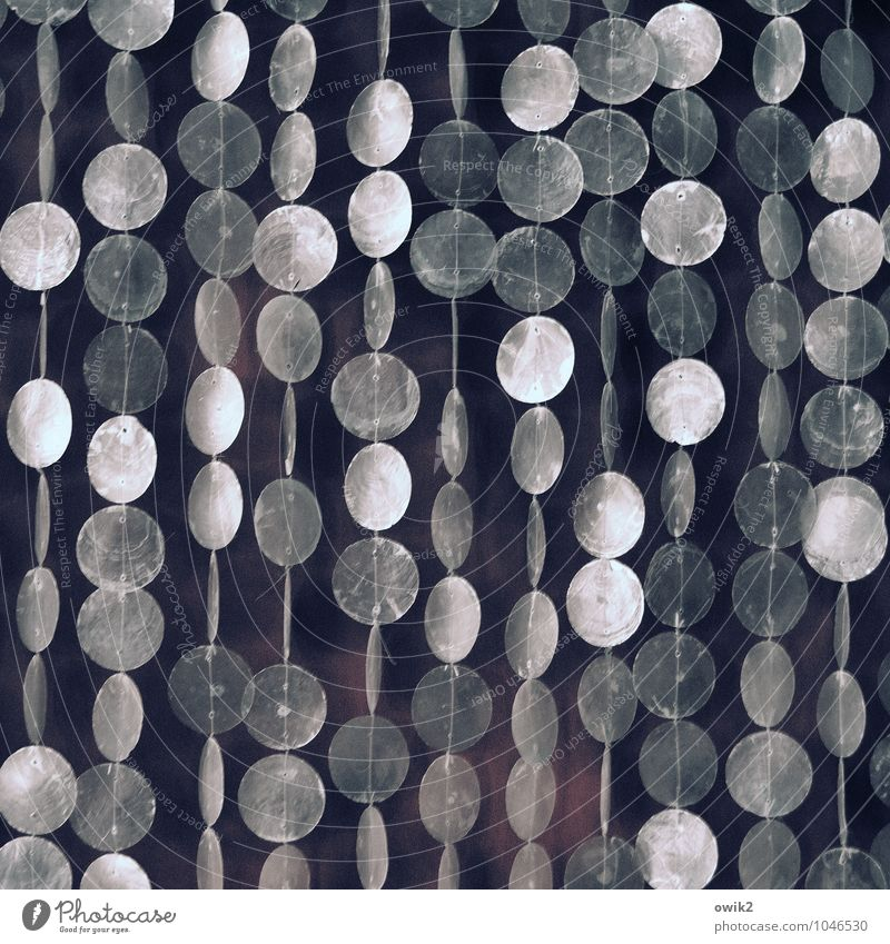 hammock Elegant Style Design Art Work of art Wall (barrier) Wall (building) Movement Hang Retro Round Many Violet Contentment Complex Attachment Mother-of-pearl