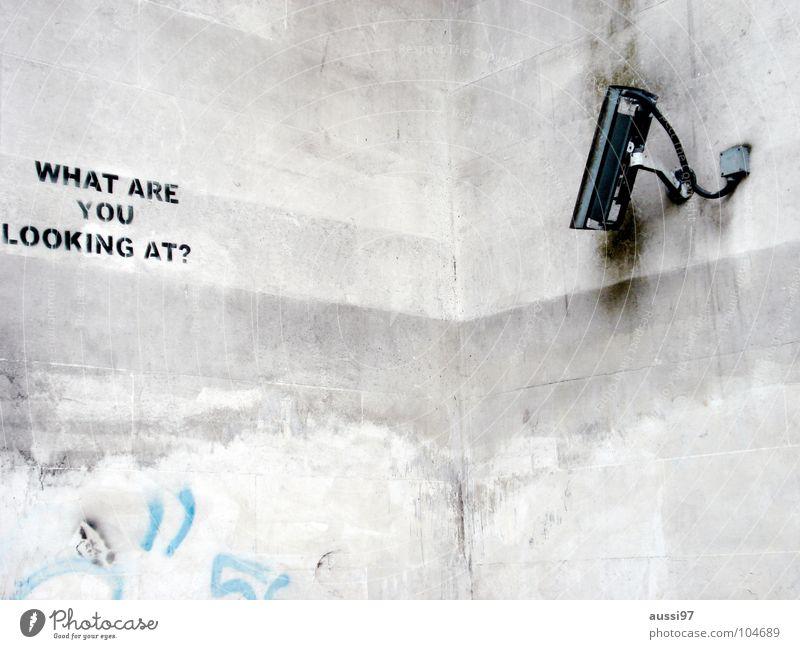 Fear Safety Camera Media Americas Panic England Surveillance Spy Monitoring Surveillance camera Hyde Park Preventative