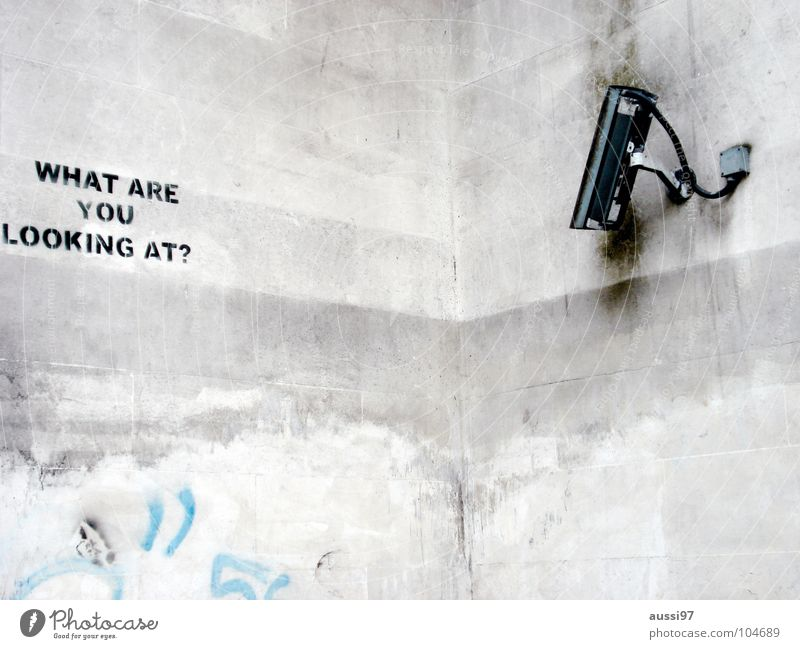 Fear Safety Camera Media Americas Panic England Surveillance Spy Monitoring Surveillance camera Hyde Park Preventative