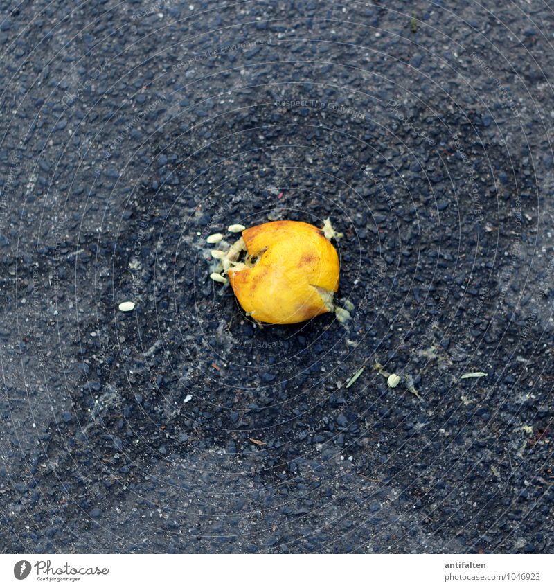 Yellow Eating Gray Fruit Nutrition Esthetic To fall Asphalt Organic produce Anger Old town Vegetarian diet Diet Kernels & Pits & Stones Fasting Lemon
