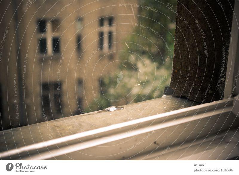 3 1/4 window Window Window board Backyard Decline Beautiful Bench Rain Drops of water Farm Fantastic