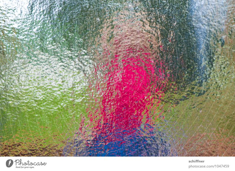 Pink Terrier, slim Glass Blue Green Pane Car Window Window pane View from a window Abstract Groove Experimental