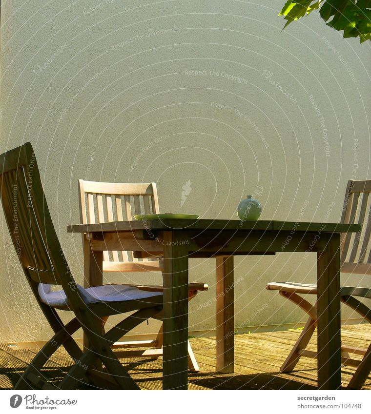 Nature Beautiful White Tree Green Summer Vacation & Travel Leaf Relaxation Wall (building) Wood Warmth Contentment Furniture Table
