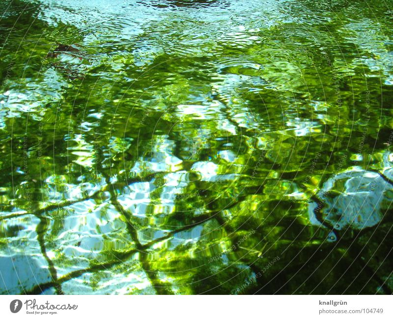 Water Green Blue Summer Tile Basin Algae Undulating Dark green