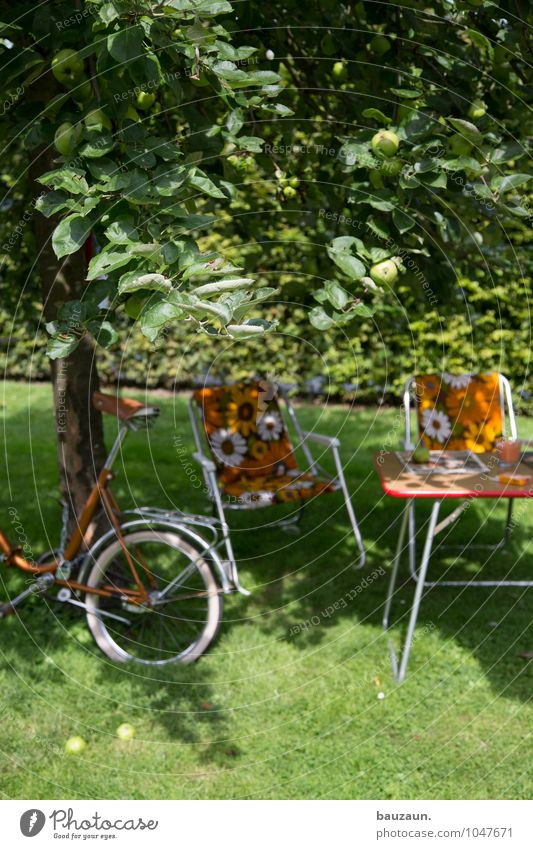 shadow. Joy Leisure and hobbies Vacation & Travel Tourism Trip Camping Cycling tour Summer Summer vacation Garden Chair Environment Nature Landscape Earth