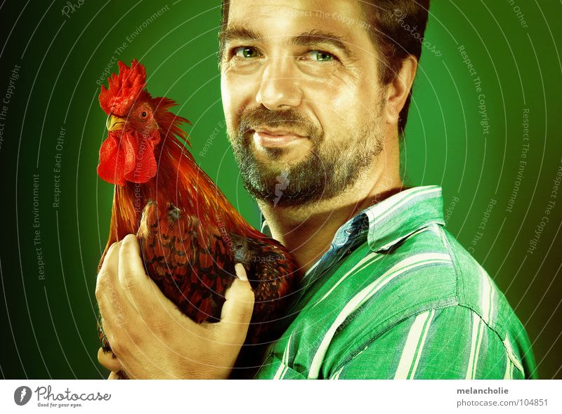 I LIKE CHICKEN Barn fowl Love of animals Portrait photograph Man Comic Design Humans and animals Nutrition