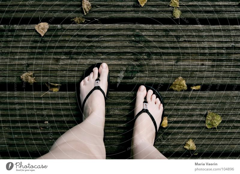 Stepped on autumn Autumn Cold Wood Footbridge Flip-flops Toes Leaf Wind Dreary Gloomy Brown Dark September October November Reluctance Woman autumn holidays