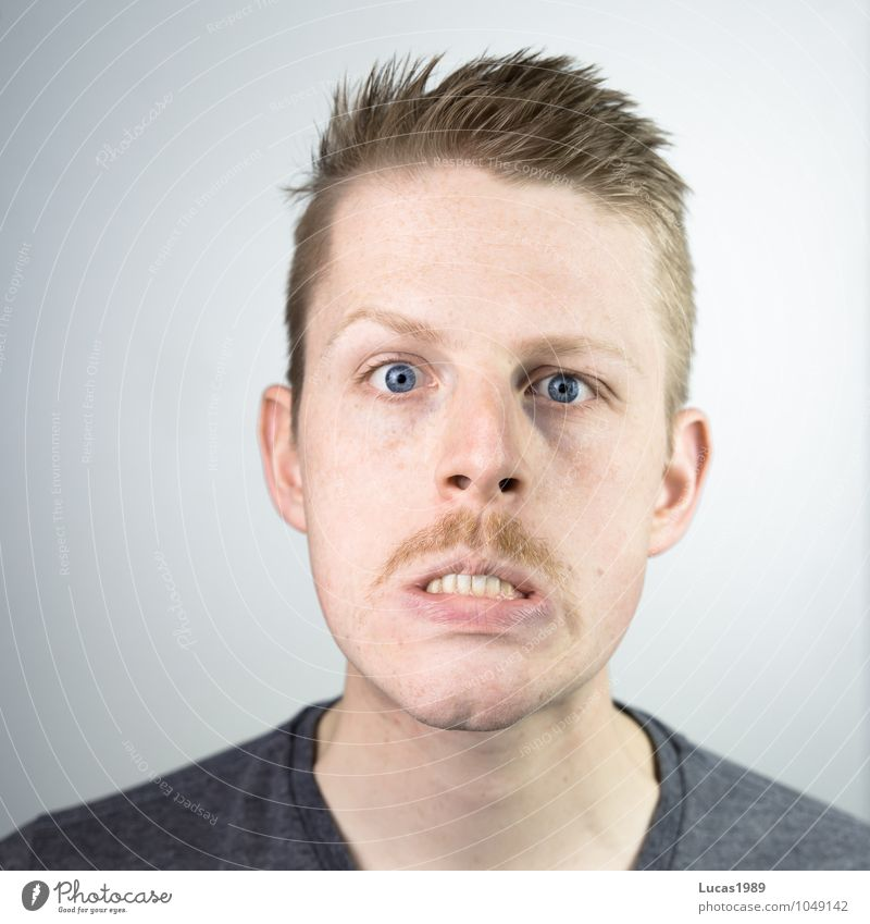 Human being Youth (Young adults) Man Young man 18 - 30 years Adults Face Exceptional Head Masculine Blonde Crazy Fantastic T-shirt Teeth Facial hair