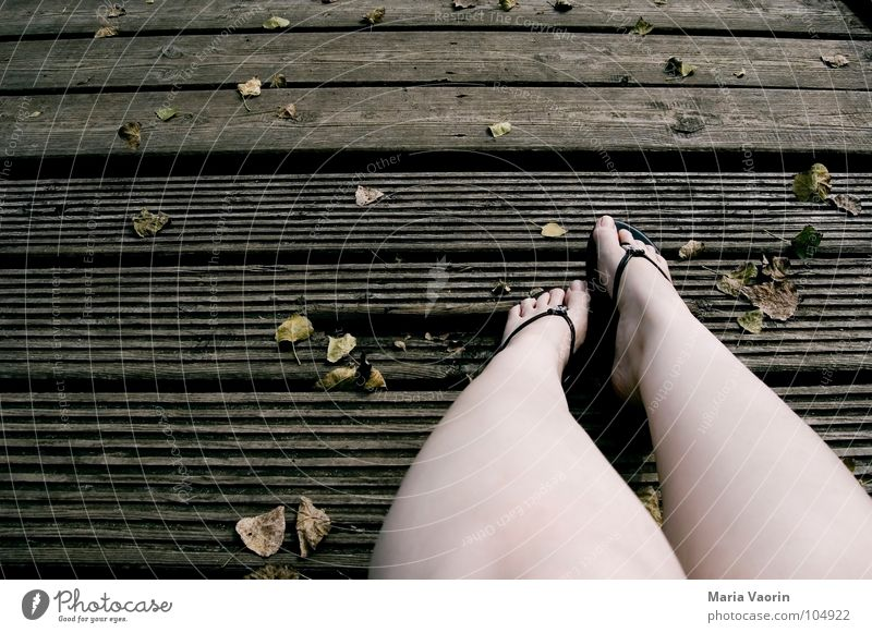 The autumn chill Autumn Cold Wood Footbridge Flip-flops Toes Leaf Wind Dreary Gloomy Brown Dark September October November Relaxation Boredom Woman