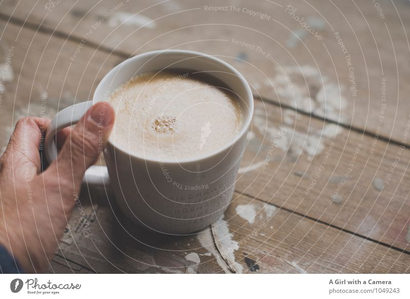morning all Food Nutrition Breakfast To have a coffee Beverage Hot drink Coffee Cup Mug Hand To enjoy Drinking Cozy Subdued colour Interior shot Close-up Detail