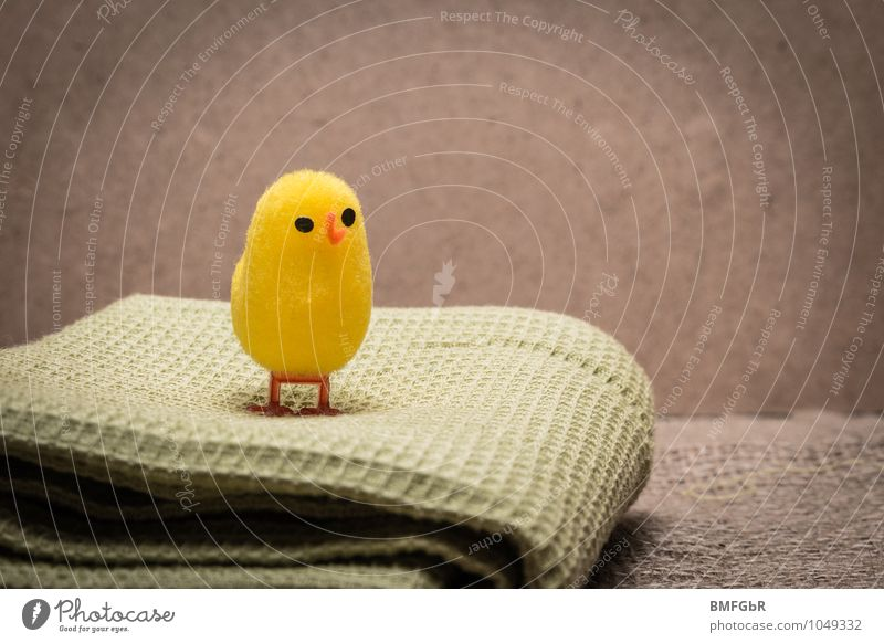 Beautiful Loneliness Animal Yellow Funny Small Above Dream Stand Happiness Cute Uniqueness Protection Hope Kitsch Fear of the future