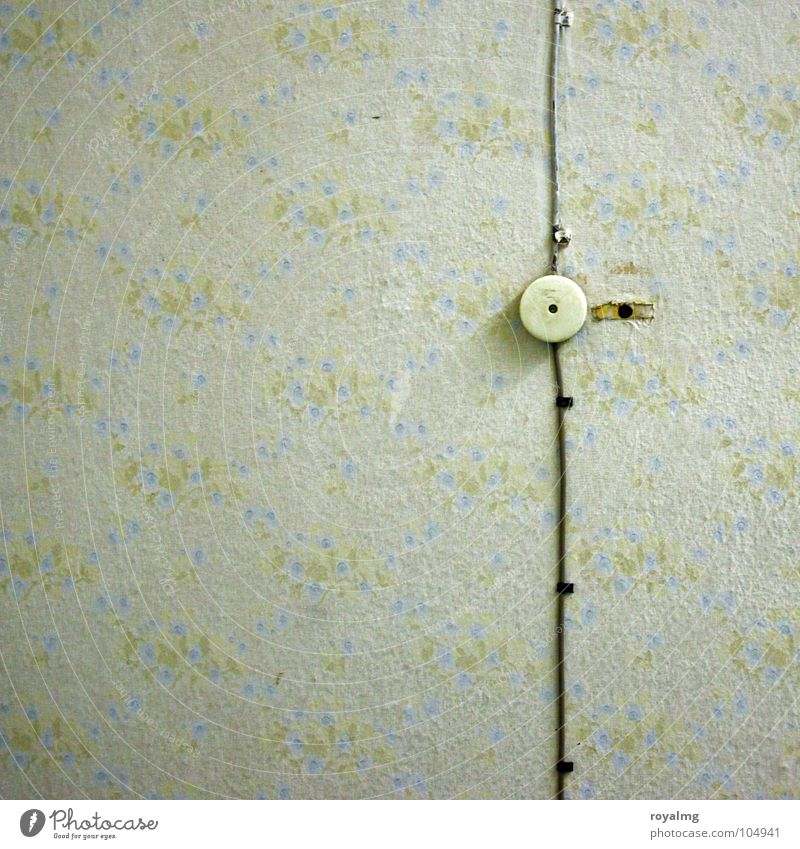 Electric Boogie Wallpaper Flower Floral wallpaper Electricity Socket Switch Light switch Yellow Green White Black Pattern Harmonious Sixties Seventies Hippie