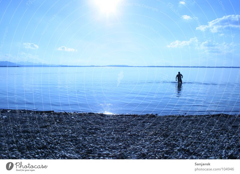 Bavarian Yeti II Lake Chiemsee Ocean Pebble Beach Waves Reflection Clouds Summer Vacation & Travel Cold Wet Playing Water Blue Sun Coast Sky tilted position