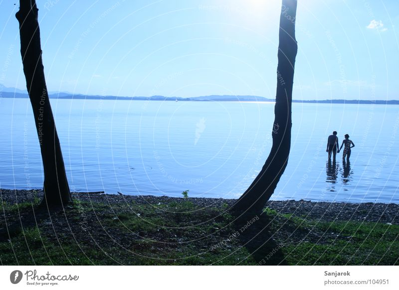 Freshly in love Lake Chiemsee Ocean Waves Reflection Clouds Bavaria Summer Vacation & Travel Lovers Cold Wet Hold hands Tree Water Blue Sun Coast Sky August