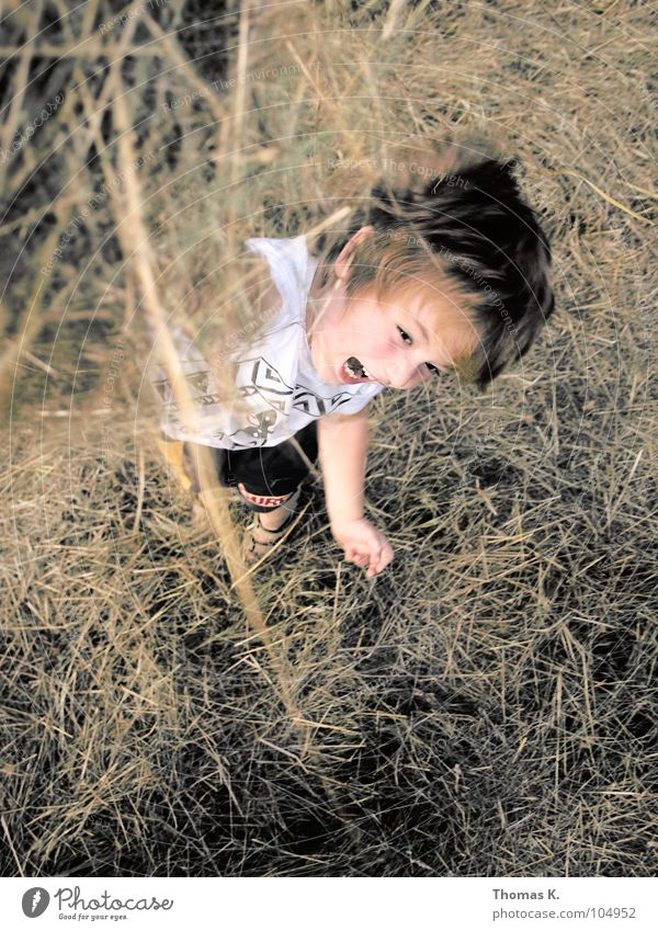 Battle of the grass. Child Boy (child) Playing Romp Throw in the air Grass Straw Dry Joy fun Tall Nature Mow the lawn scythed Movement Exterior shot