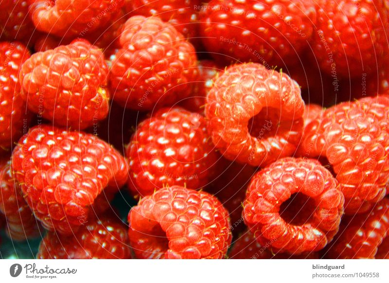 Raspberry Beret Food Fruit Organic produce Vegetarian diet Diet Fresh Healthy Delicious Sweet Blue Red Seed Dessert Colour photo Close-up Deserted Day