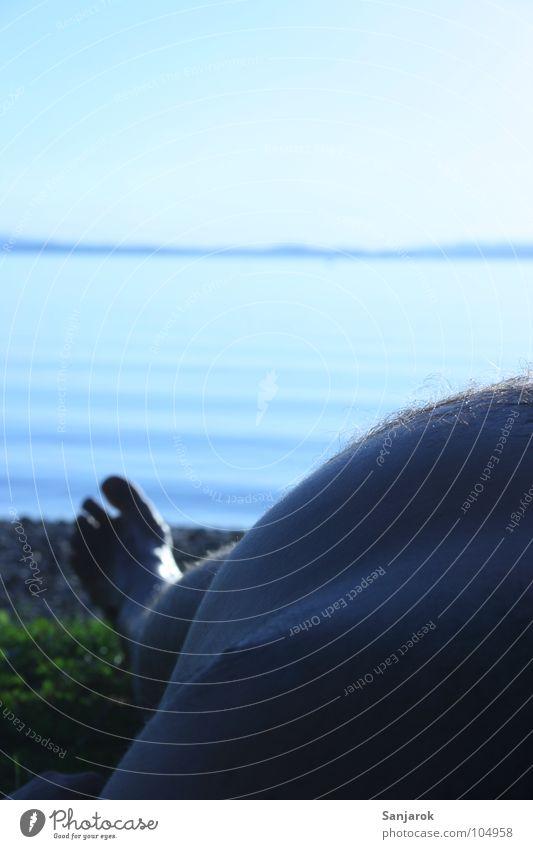 Man Water Sun Ocean Blue Summer Beach Vacation & Travel Calm Feet Lake Legs Coast Waves Lie Leisure and hobbies