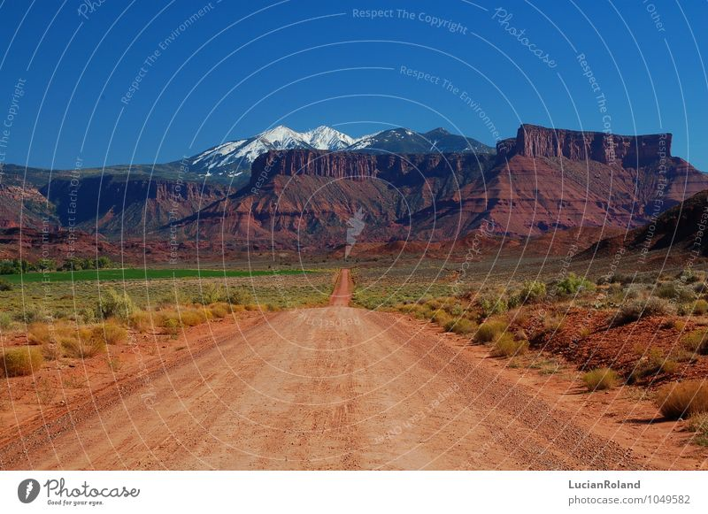 dirt road to the beauty Vacation & Travel Adventure Far-off places Freedom Sightseeing Expedition Nature Landscape Plant Summer Beautiful weather Drought Bushes