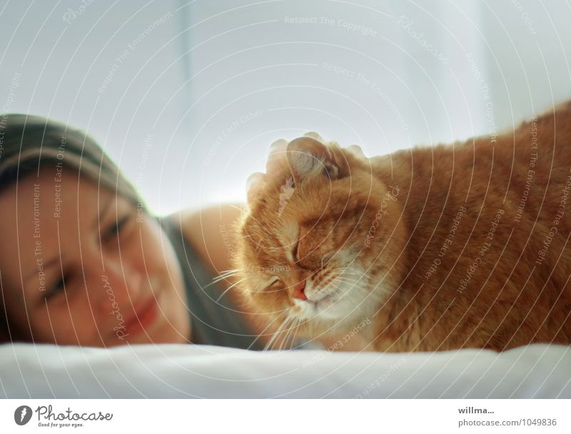 Smiling young woman relaxing at home with cat on bed Woman Cat Contentment Young woman Youth (Young adults) smile Caress relaxed Cute Love of animals Purr