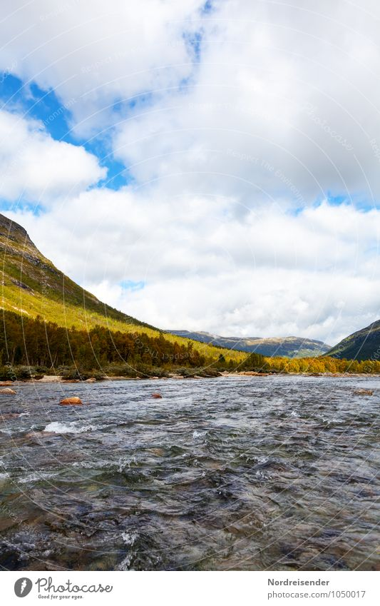 Reinheimen Freedom Nature Landscape Water Sky Clouds Summer Climate Forest Mountain River Fluid Wanderlust Loneliness Uniqueness National Park Norway Oppland