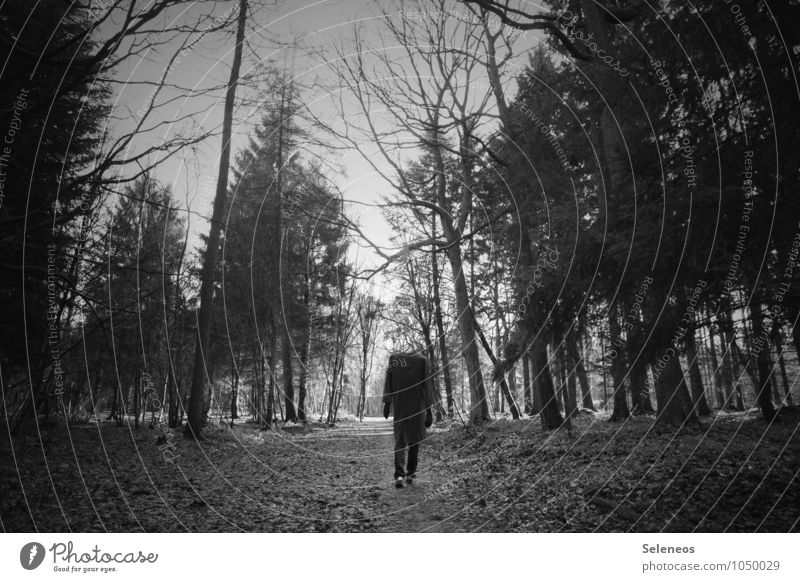 walking dead Trip Hiking Hallowe'en Human being Man Adults 1 Environment Nature Autumn Winter Forest Coat Going Creepy Promenade Black & white photo
