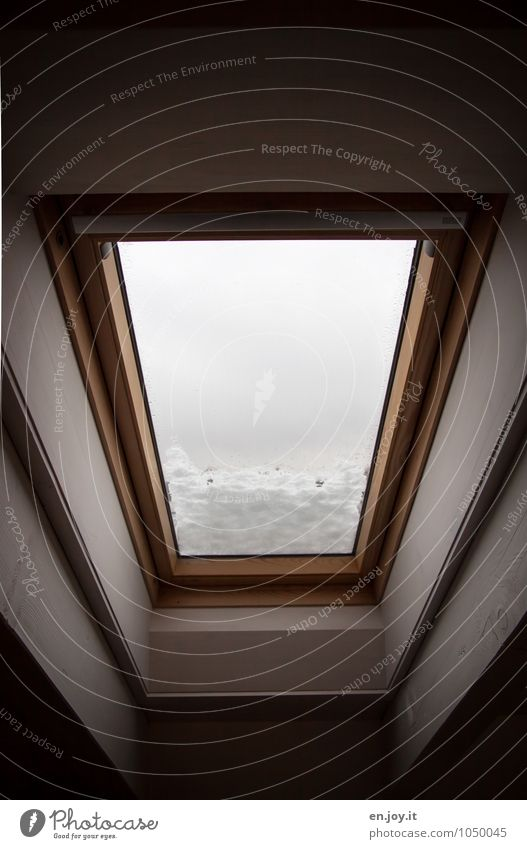 ...I said. Living or residing Flat (apartment) Interior design Window Skylight Penthouse Roof beams Winter Climate Bad weather Snow Dark Black White Protection