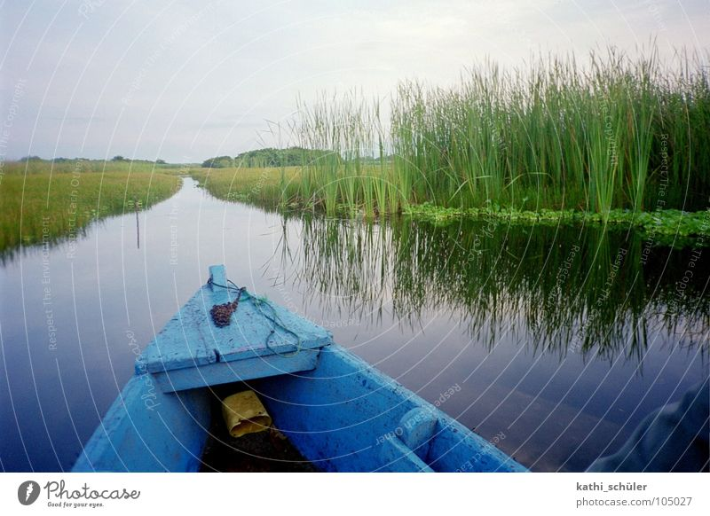 boat trip Grass Watercraft Horizon Guatemala Central America Blue River Nature Coast