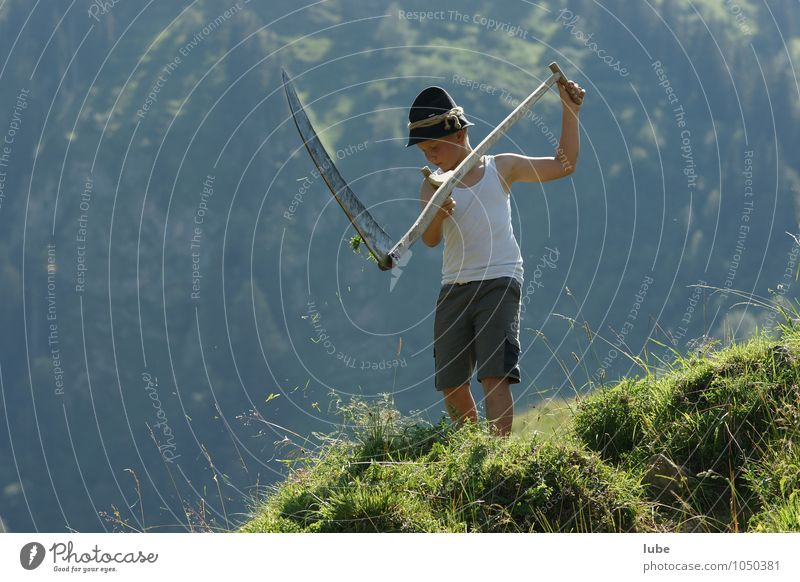 mowing Agriculture Forestry Child Boy (child) 1 Human being Environment Nature Landscape Plant Summer Beautiful weather Grass Meadow Alps Mountain Diligent
