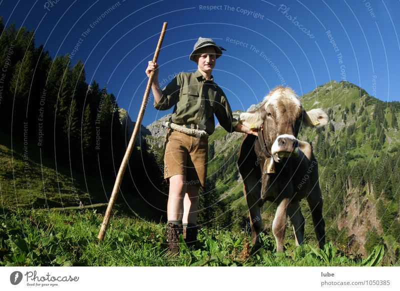 young farmer Agriculture Forestry Child 1 Human being Environment Nature Landscape Cloudless sky Summer Hill Rock Alps Mountain Animal Pet Farm animal Cow Joy