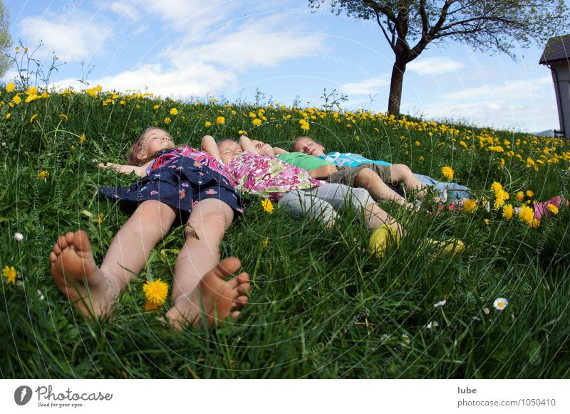 Lying in the meadow Happy Harmonious Well-being Contentment Relaxation Calm Human being Brothers and sisters Friendship Infancy 4 8 - 13 years Child Nature