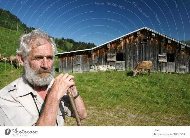 Human being Nature Man Old Summer Landscape Environment Mountain Senior citizen Masculine 60 years and older Agriculture Male senior Farm Watchfulness Farmer