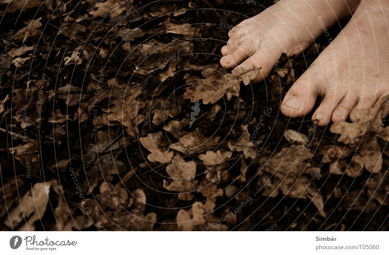 Man Nature Leaf Sand Feet Earth Dirty Stand Floor covering Soft Barefoot Toes