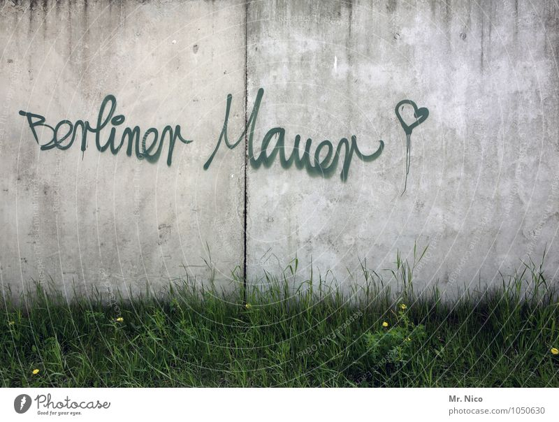 In the long run the wall will fall Freedom City trip Plant Grass Town Manmade structures Wall (barrier) Wall (building) Landmark Gray Green Graffiti Berlin