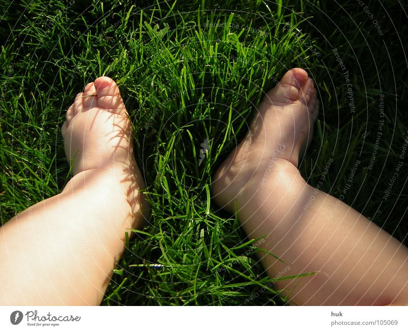 show me your little feet ... Meadow Grass Green Summer Dark Dwarf Baby Child 2 Small Toes Toddler Nature Garden Lawn Shadow Bright Legs Feet Skin Barefoot