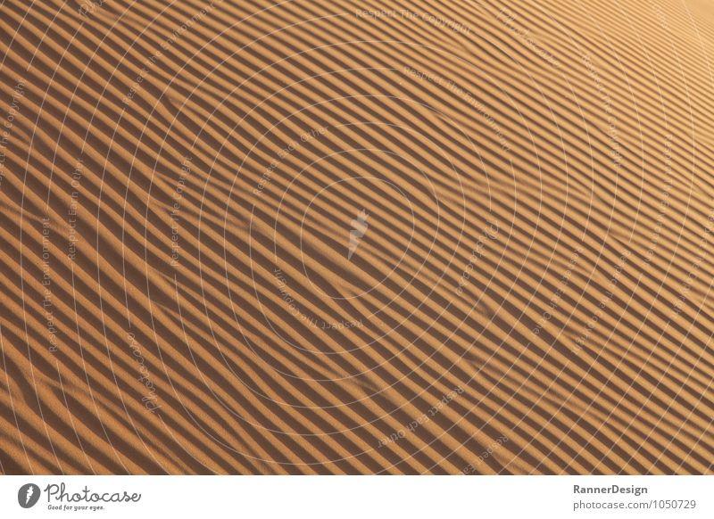 Loneliness Landscape Sand Contentment Earth Warm-heartedness Desert