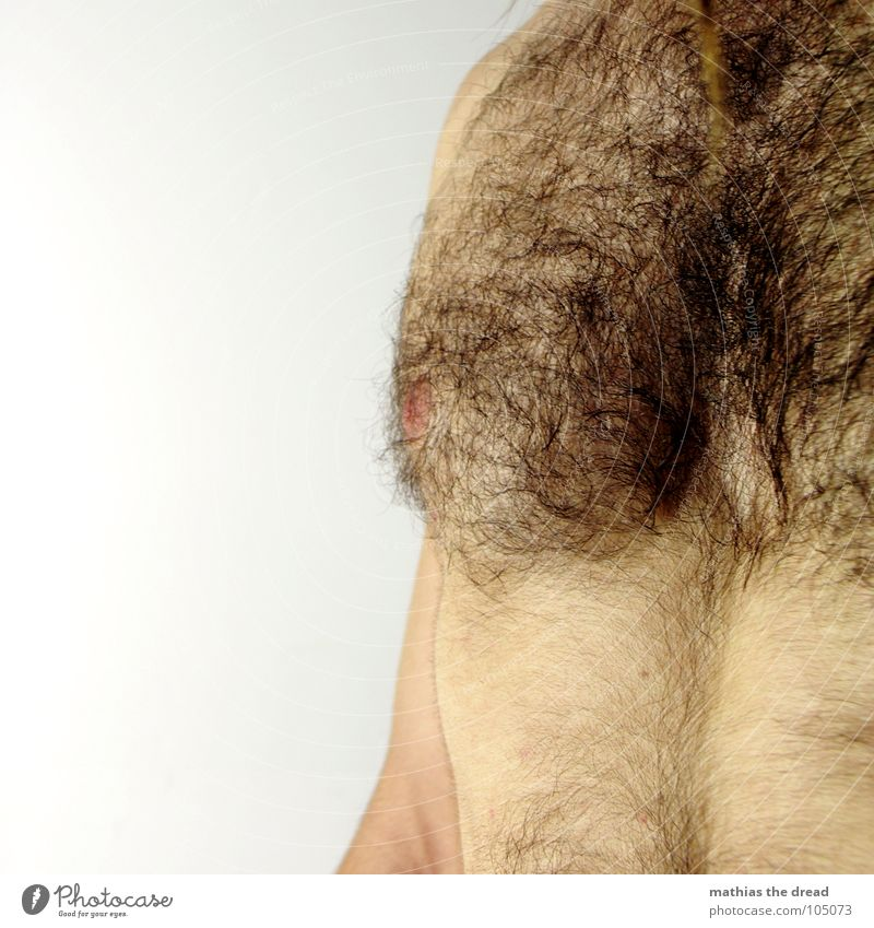 chest hair Hairy chest Physics Multiple Dark Unshaven Upper body Man Masculine Maturing time Hair and hairstyles Warmth Many Wild animal Body Skin excerpt Arm