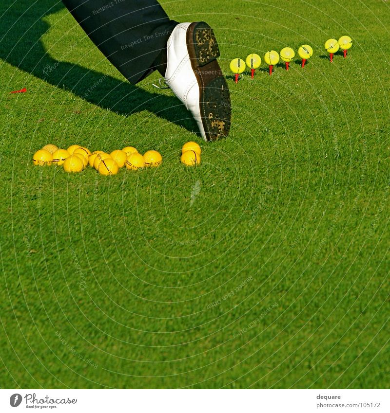Golf Pro Footwear Golf shoes Grass Green Calm Perfect Meadow Golfer Sports Playing Leisure and hobbies Lawn Ball professional per Tea studded shoe fairway