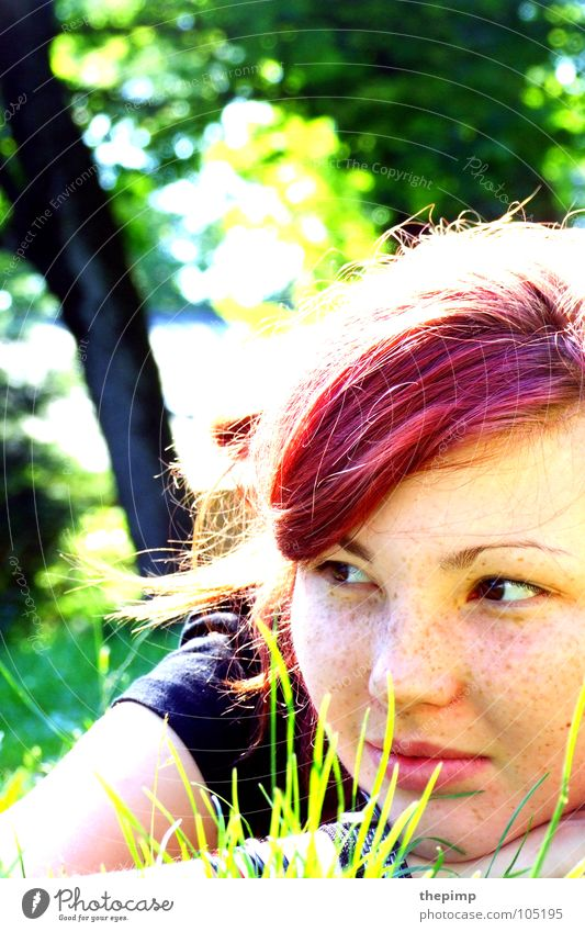 Woman Tree Sun Green Red Summer Face Eyes Meadow Grass Dream Hair and hairstyles Nose Lips