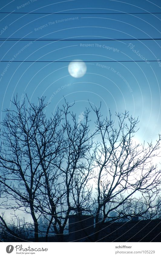 Sky Sun Tree Winter Dark Sadness Autumn Death Fog Roof Cable Grief Creepy
