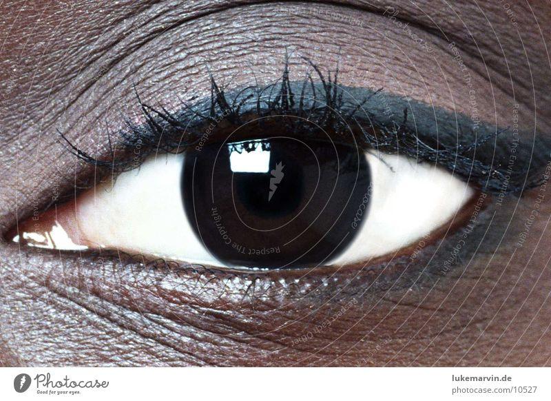 Woman Eyes Feminine Africans