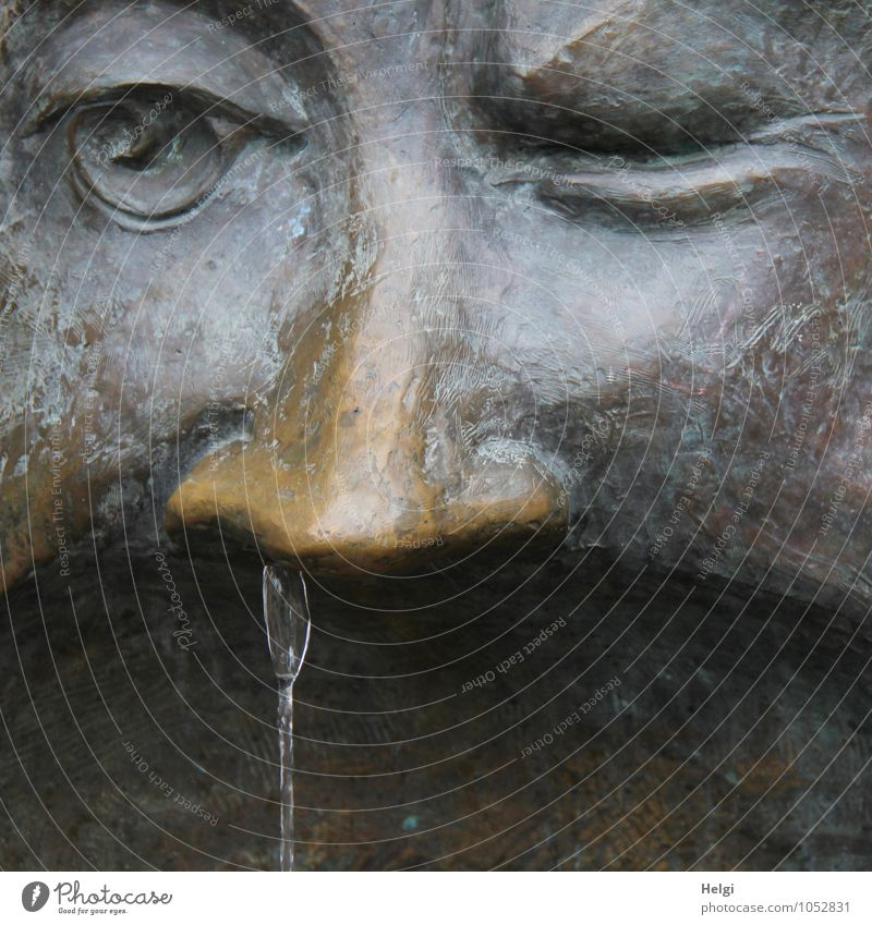Water Eyes Gray Exceptional Brown Art Metal Walking Wet Creativity Uniqueness Nose Common cold Statue Detail of face