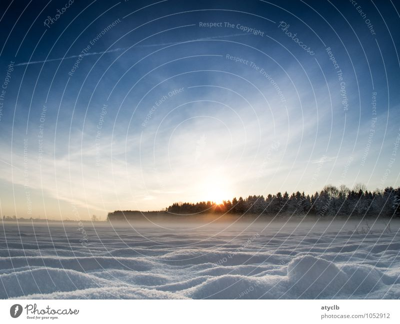 Snow and Sky Environment Nature Landscape Earth Air Sun Sunrise Sunset Sunlight Winter Ice Frost Meadow Field Forest Cold Blue Brown Yellow White Peace