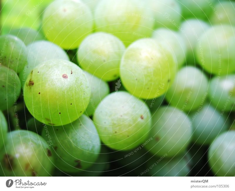 green berry Bunch of grapes Close-up Many Green Sweet Fruity Vegetarian diet Vegan diet Raw vegetables Healthy Eating Grape harvest Vine