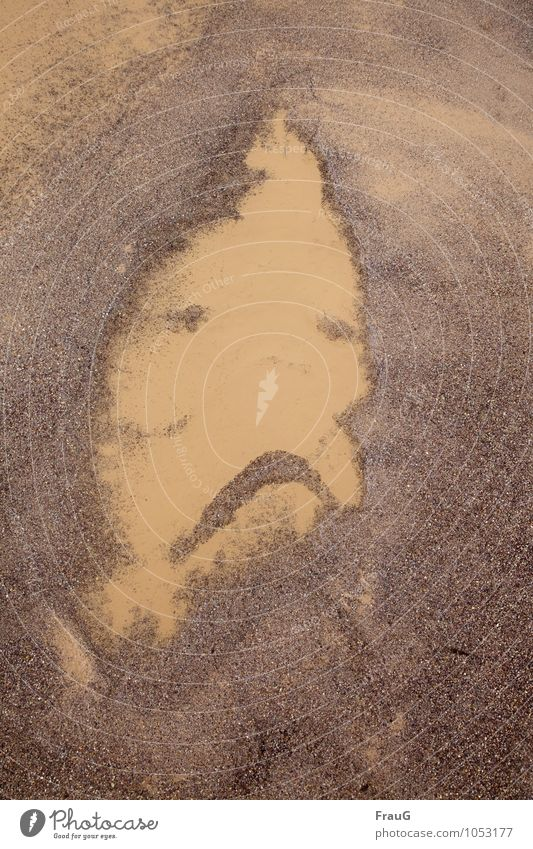 Nature Man Water Loneliness Adults Face Sadness Brown Sand Masculine Fluid Puddle