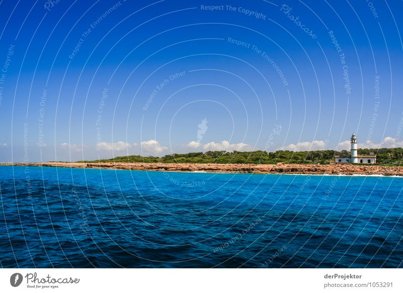 Nature Vacation & Travel Plant Summer Ocean Landscape Far-off places Environment Emotions Coast Freedom Rock Waves Tourism Transport Island